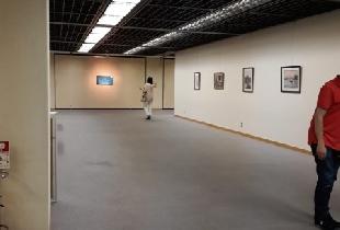 Exposición Art Quake Kyoto. Museo de Kyoto. Agosto 2019